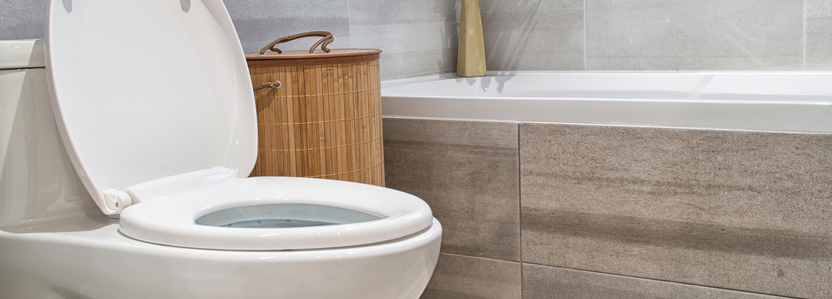 Toilet Repair - Toilet Repair and Installation