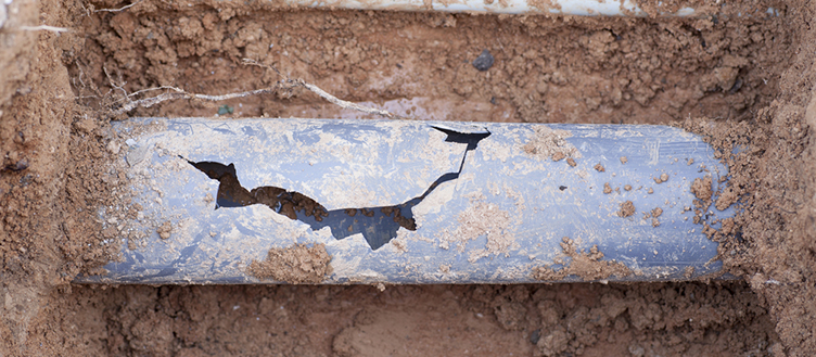 blog big green 1 - How to Tell if Your Sewer Pipe is Clogged or Damaged