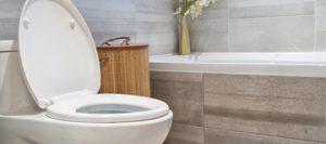 Toilet Repair sml 300x133 - Toilet-Repair_sml